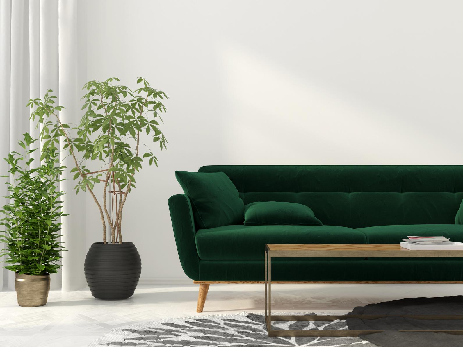 Зеленый диван 2018