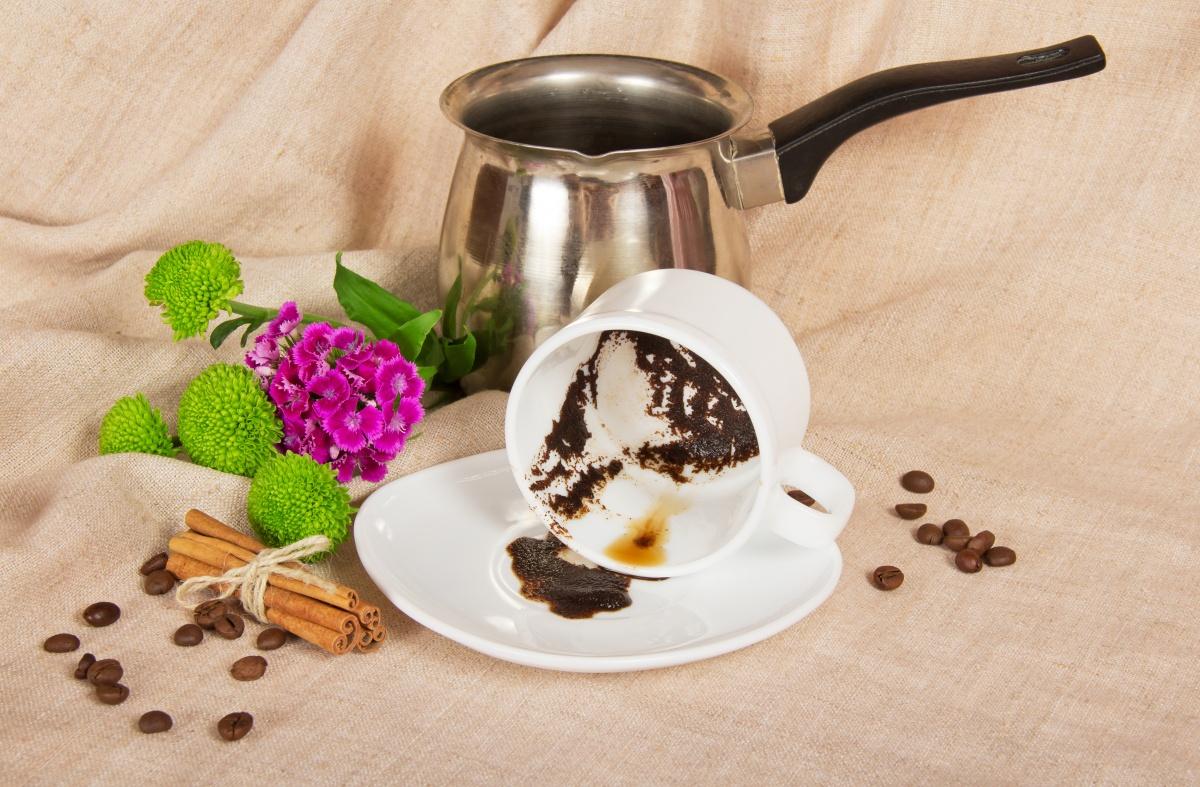 Подкормка комнатных растений кофе