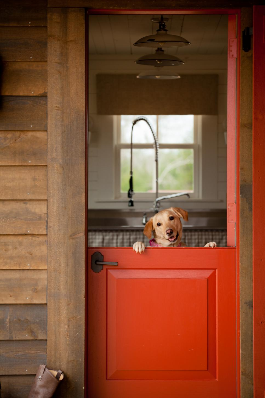 Красная дверь для дачи