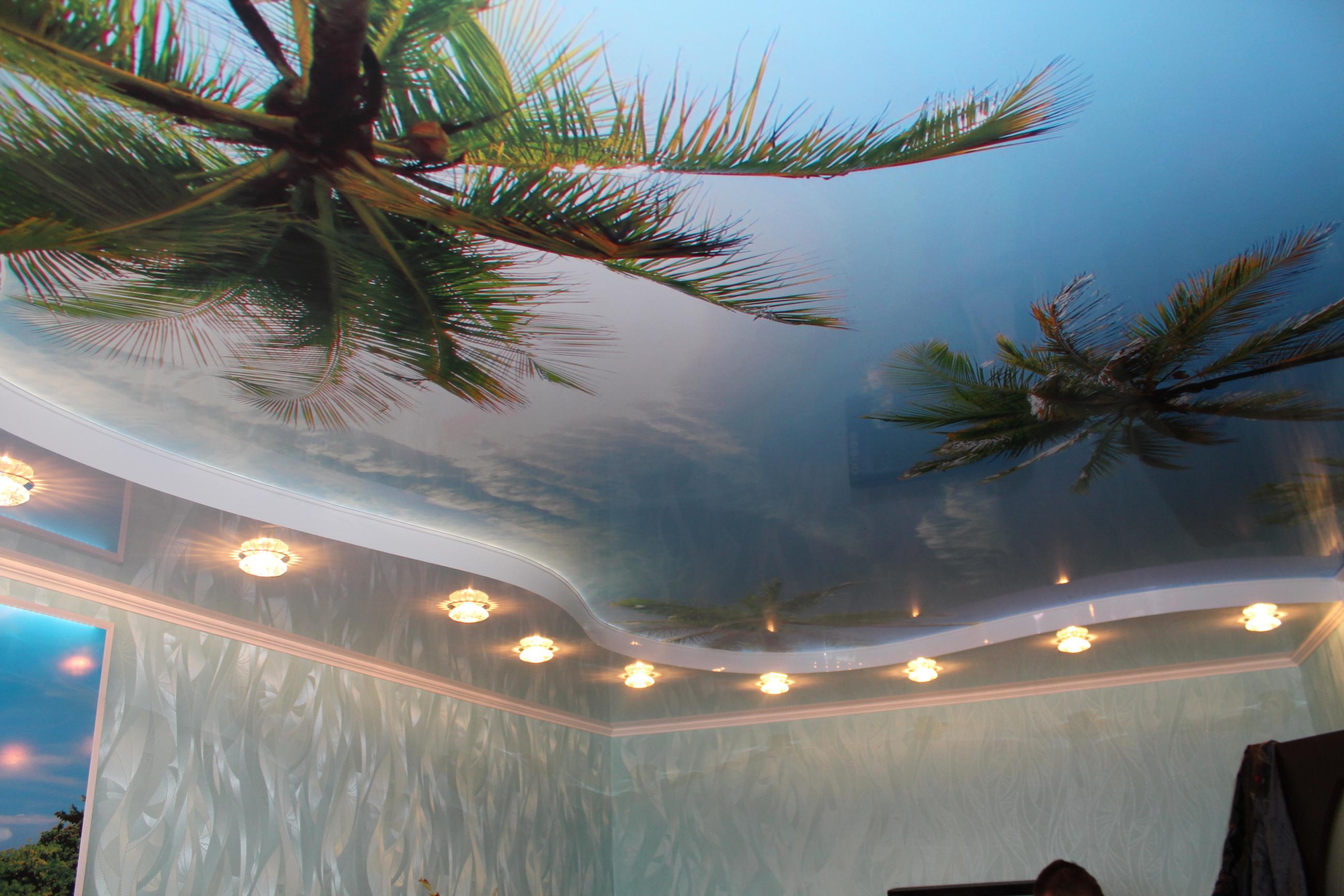 Натяжной потолок с фотопечатью пальм