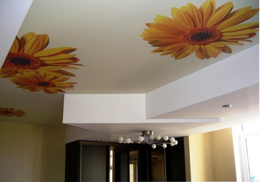 Матовый потолок с принтом