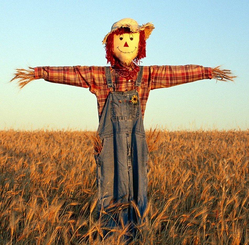 Чучело из пшеницы