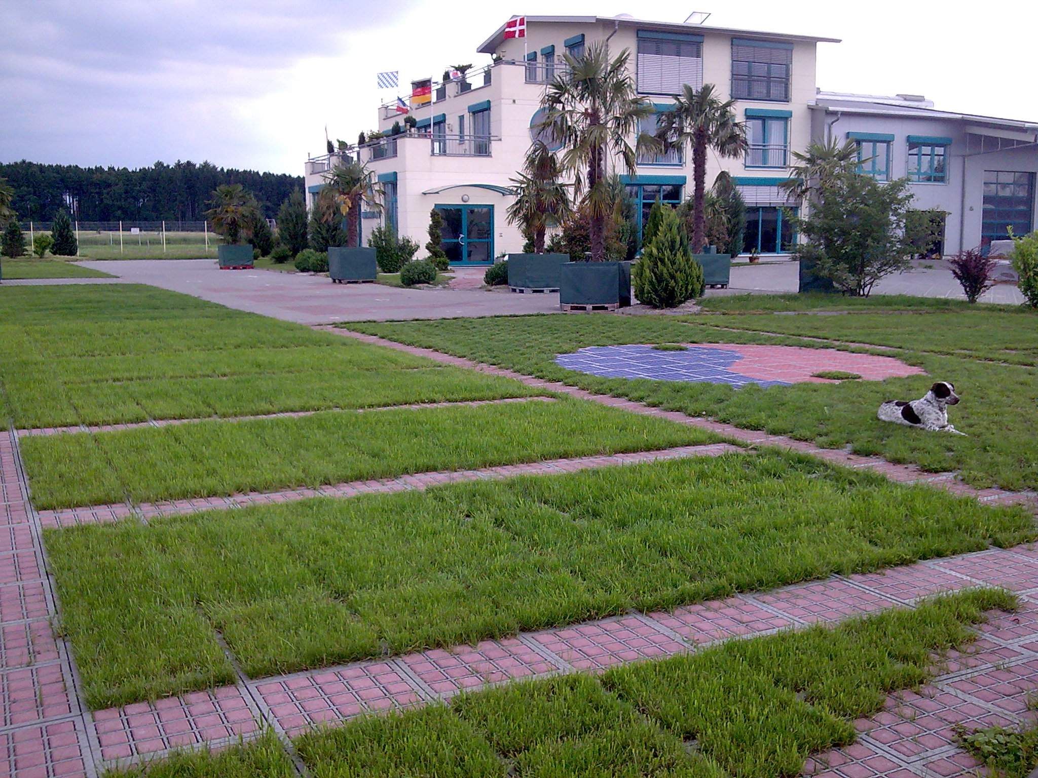 Укрепление почвы газонной решеткой