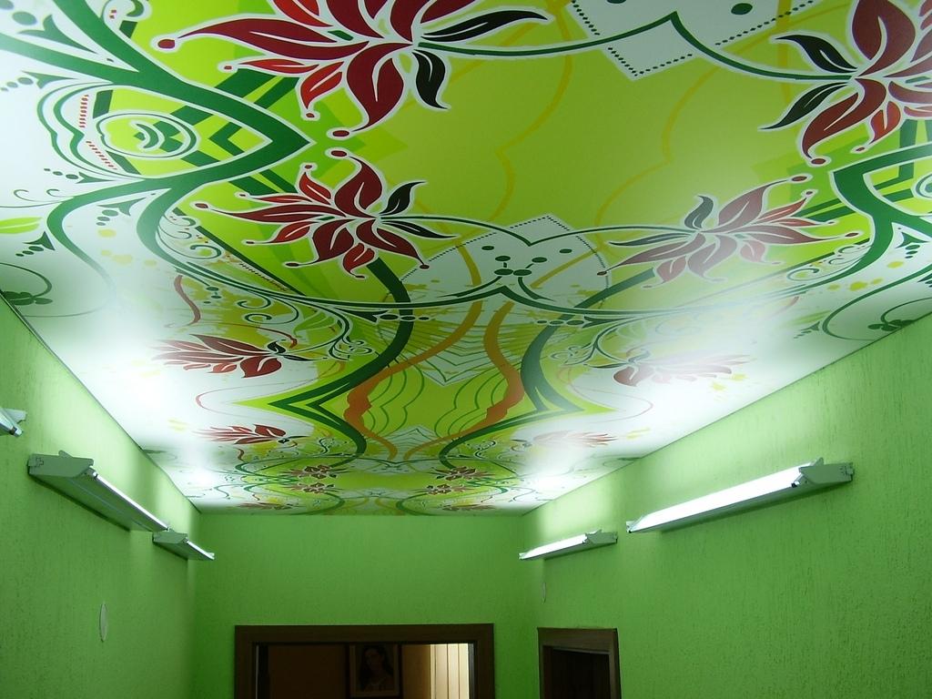 Натяжной зеленый потолок с фотопечатью