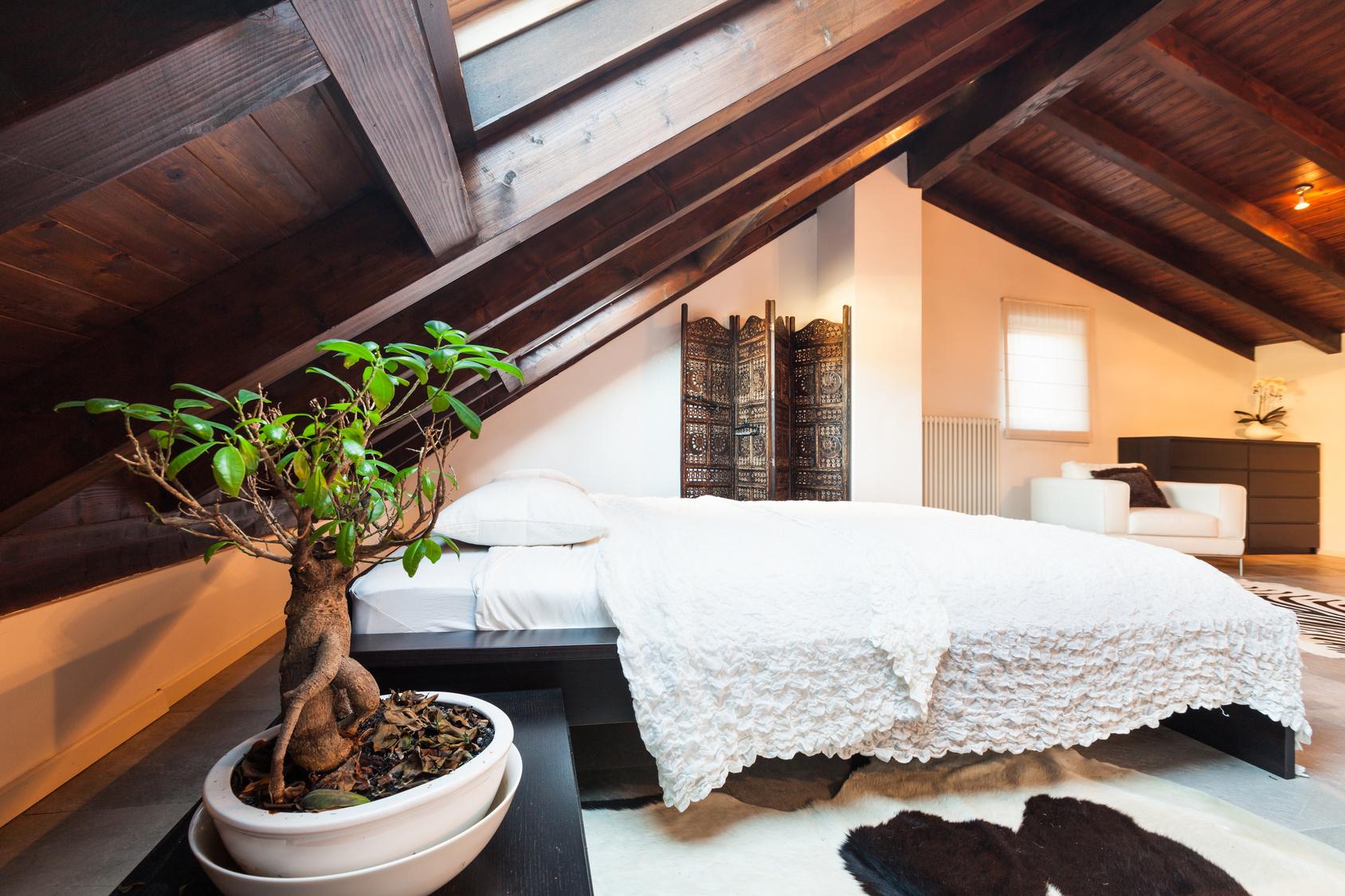 Бонсай в спальне