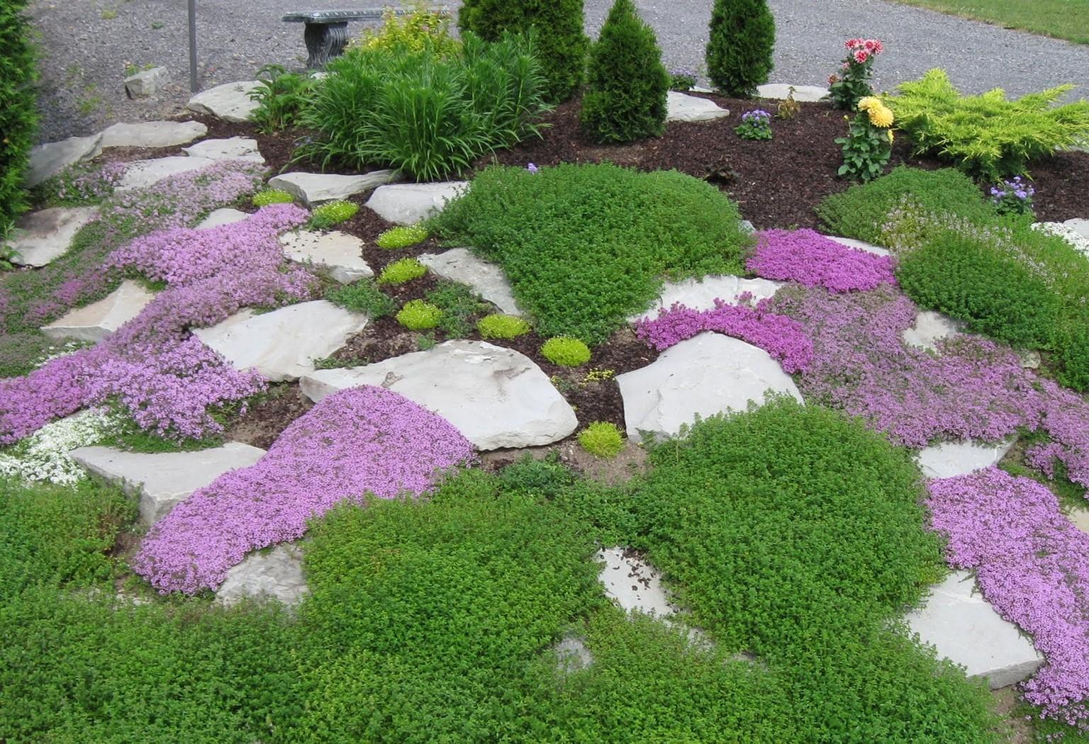 Рокарий из мелких цветов