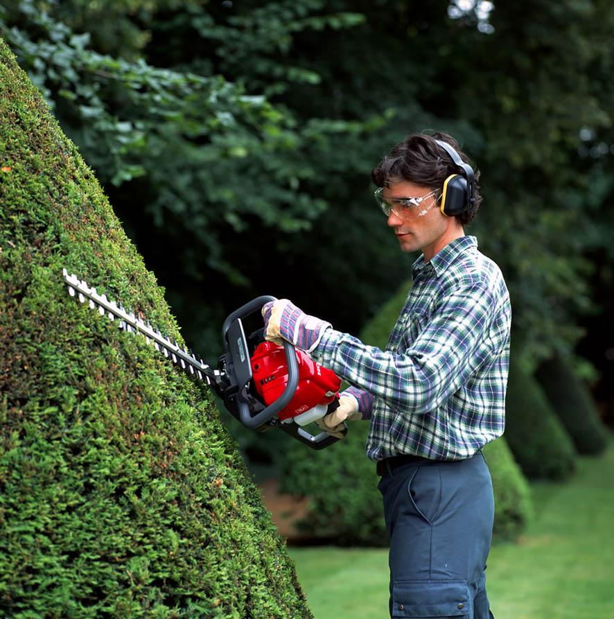 Садовые ножницы для кустов