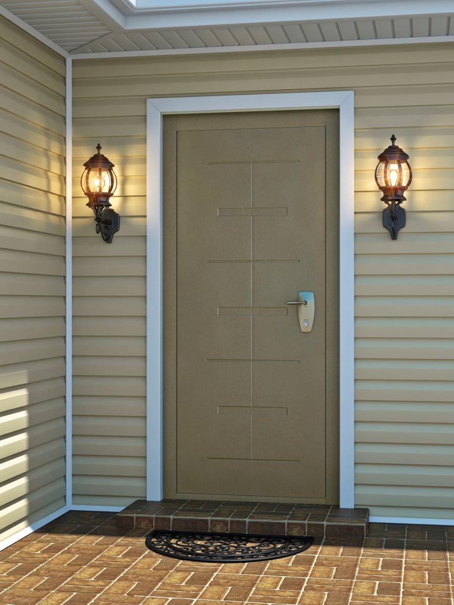 Металлопластиковая дверь в дом