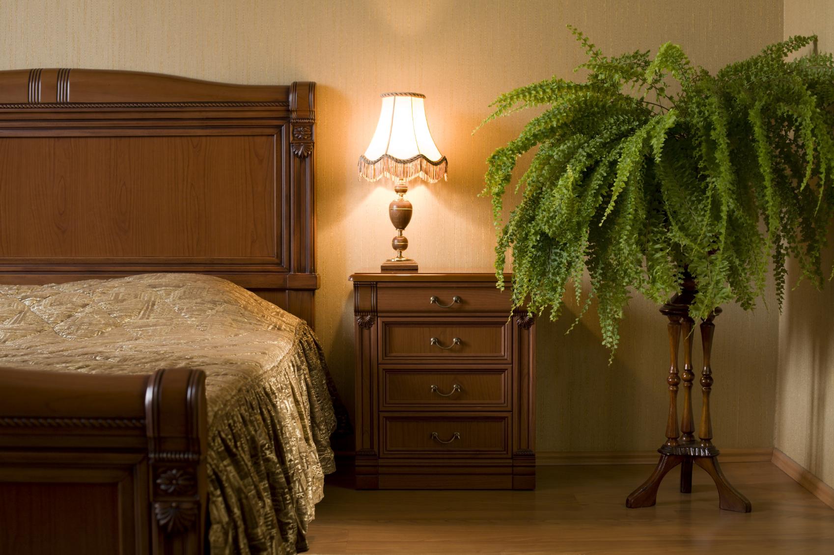Папоротник в спальне