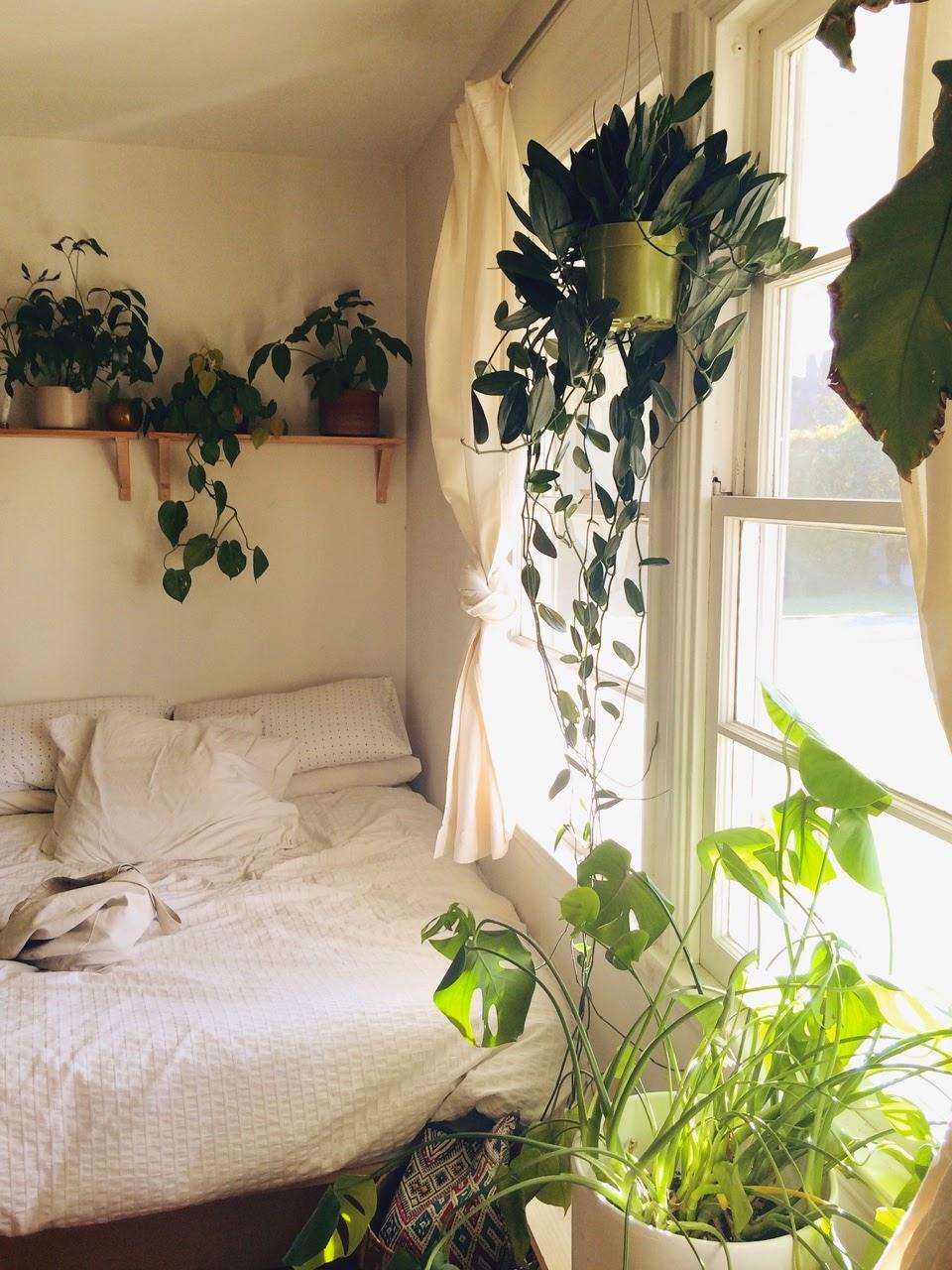 Цветы в подвесном горшке в спальне