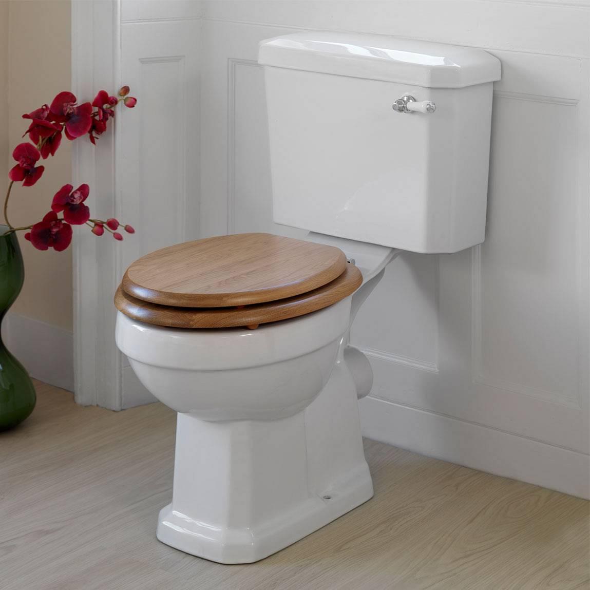 Сиденье для унитаза – простое устройство с необычными функциями (25 фото)
