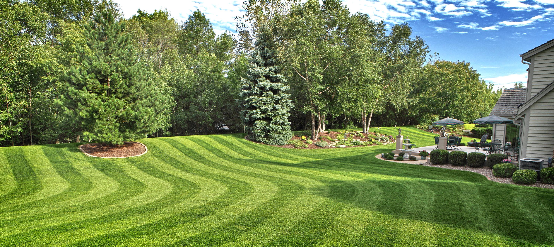 Рулонный линейный газон
