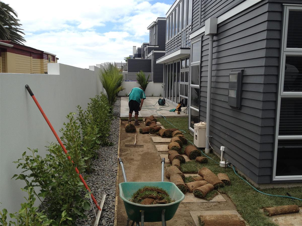Рулонный газон в стиле модерн