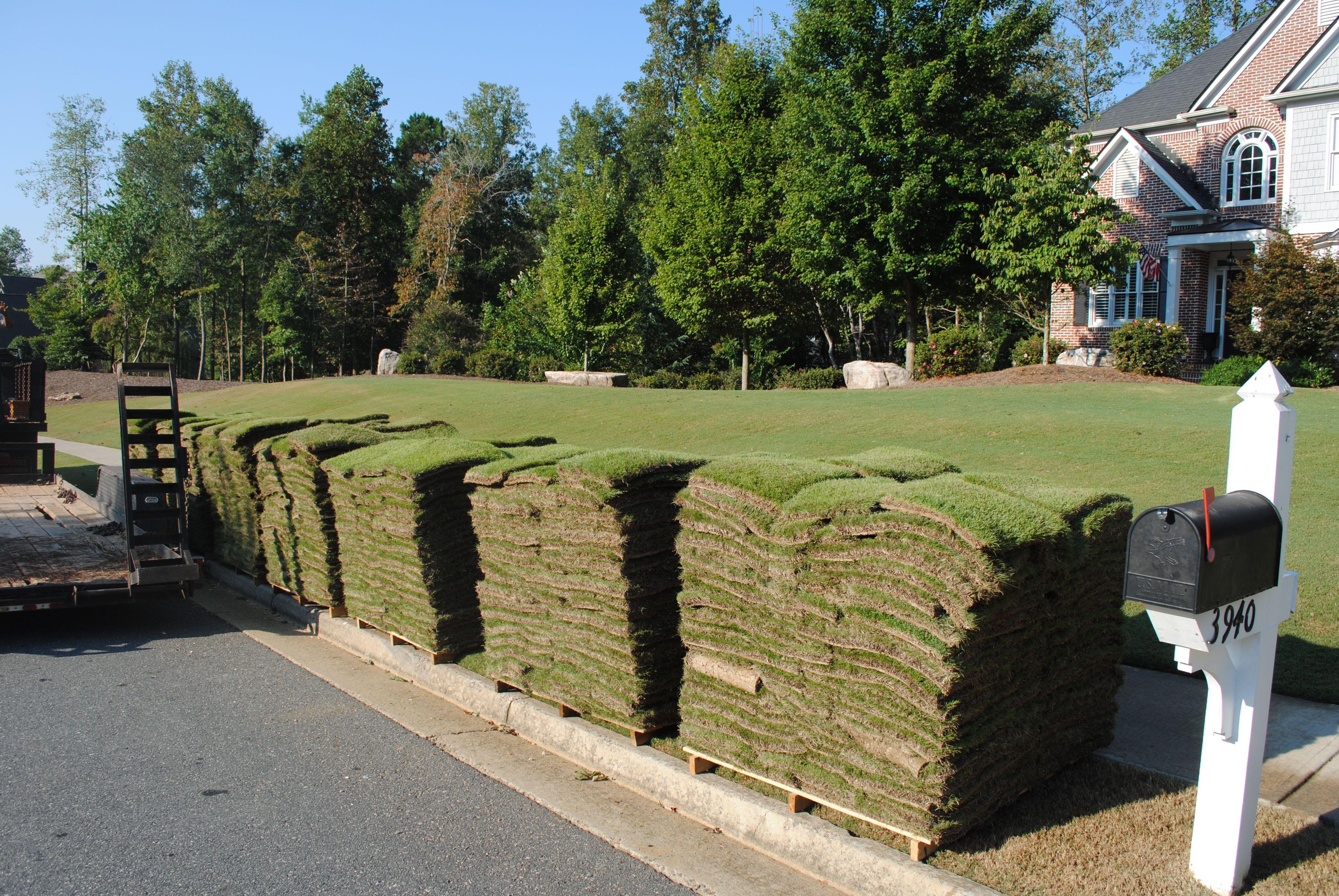 Устройство рулонного газона