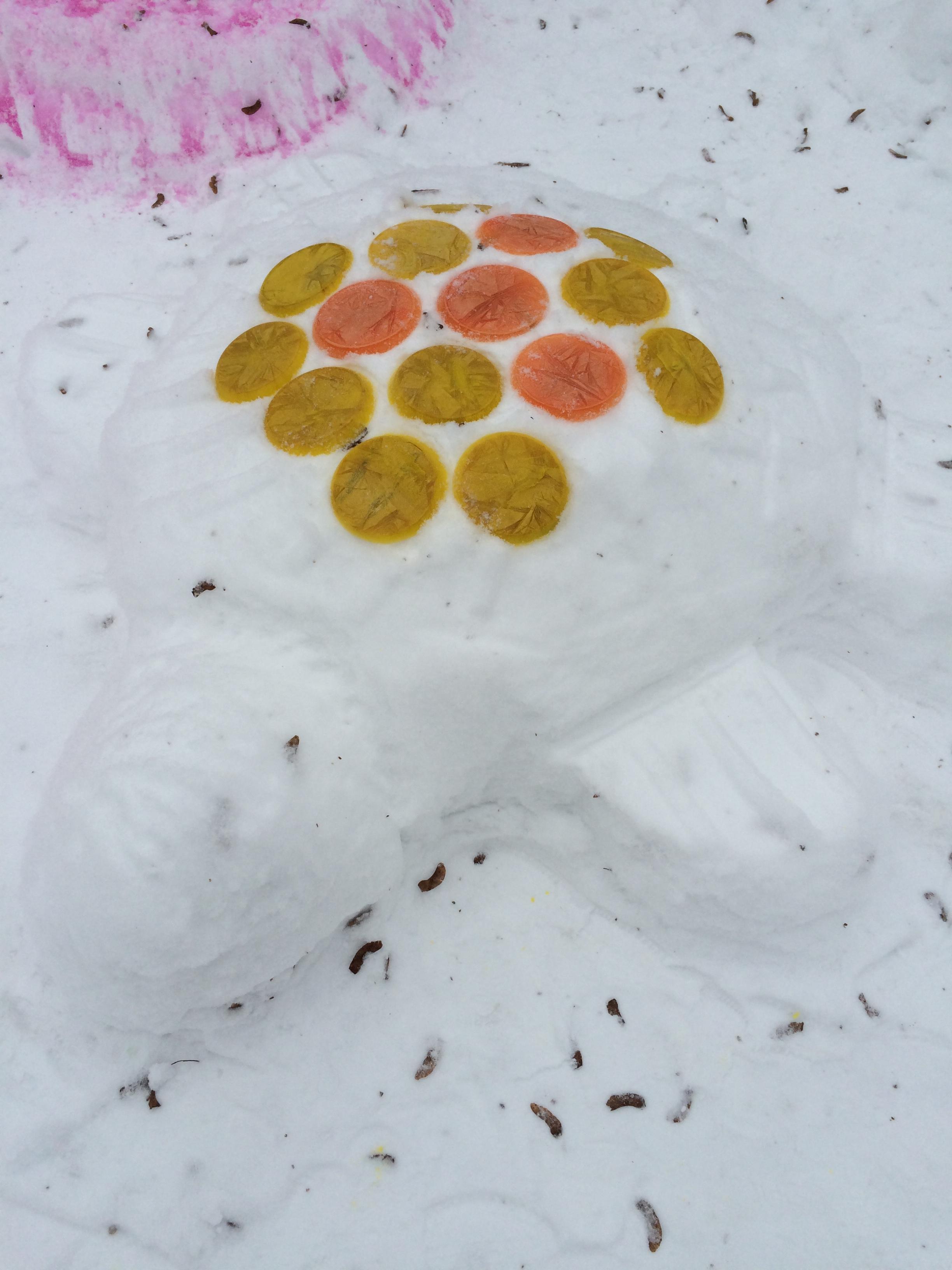 Снежная горка черепаха