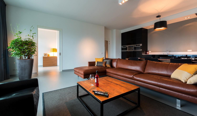 Дизайн однокомнатной квартиры с кожаным диваном