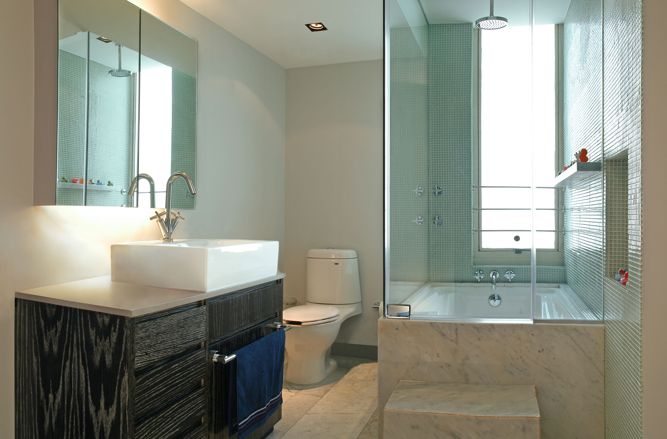 Совмещенная ванная комната венге