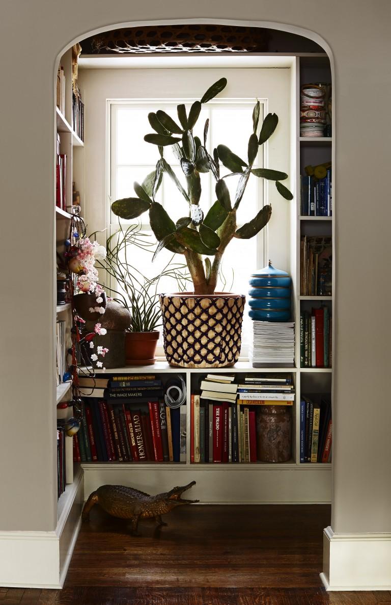 Ниша в комнате для книг