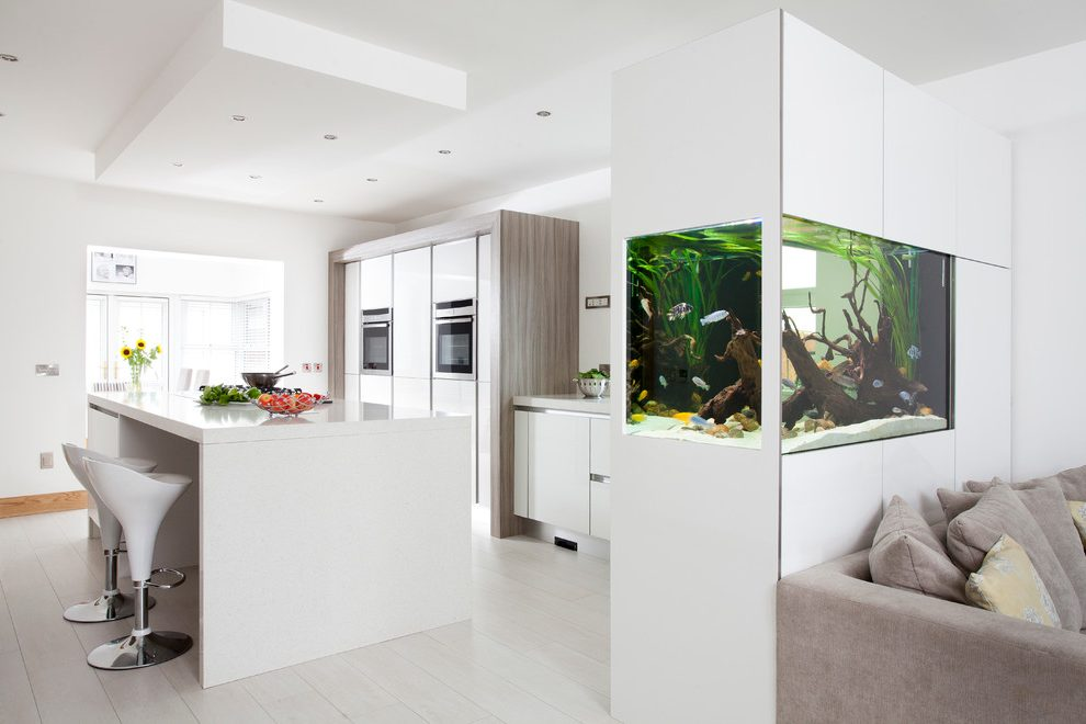 Аквариум своими руками на кухне