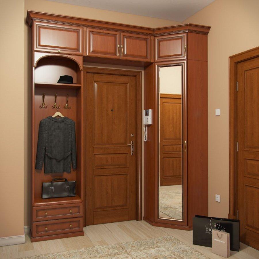 Шкаф в прихожую вокруг двери