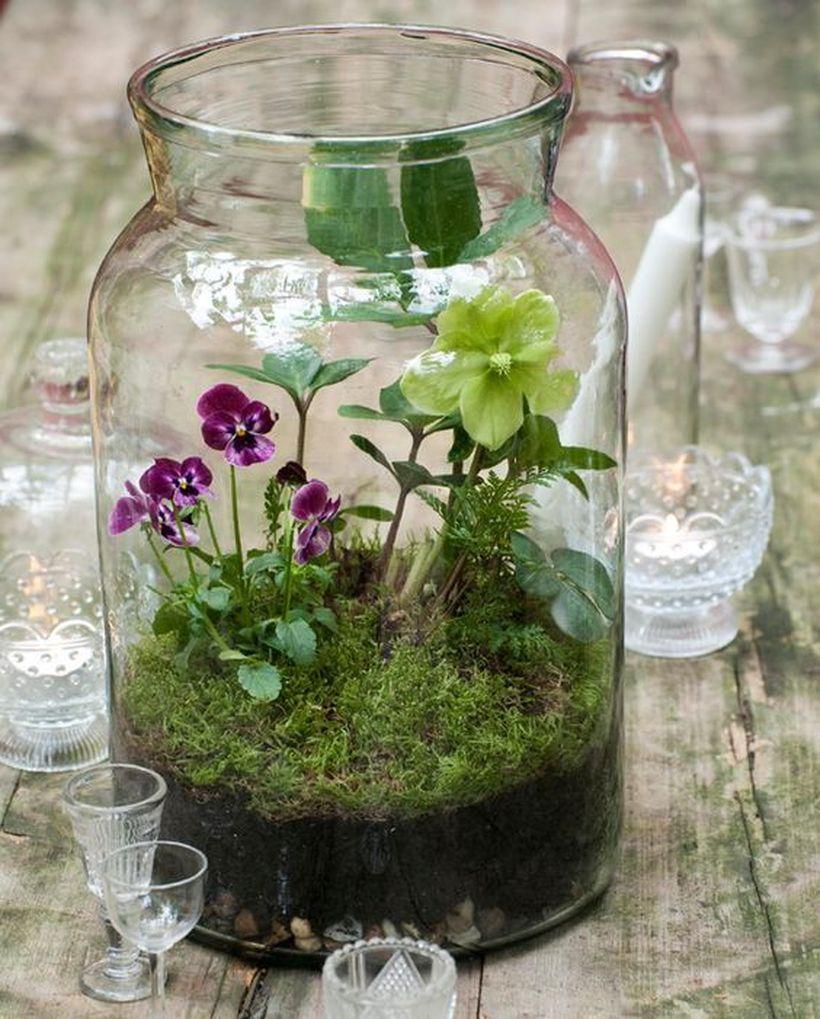 Флорариум с цветущими растениями