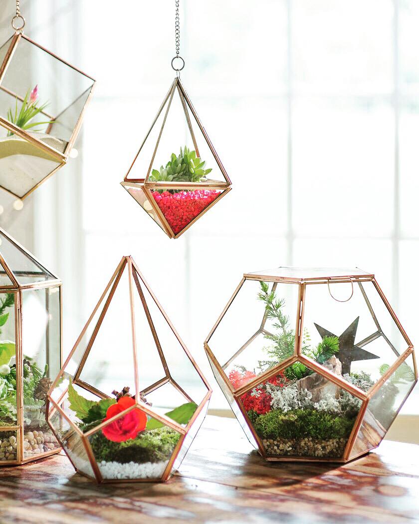 Флорариум декоративный