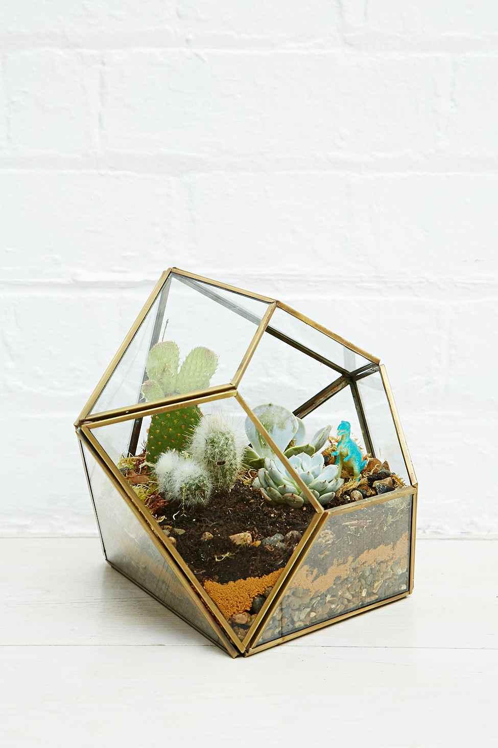 Флорариум геометрический стеклянный