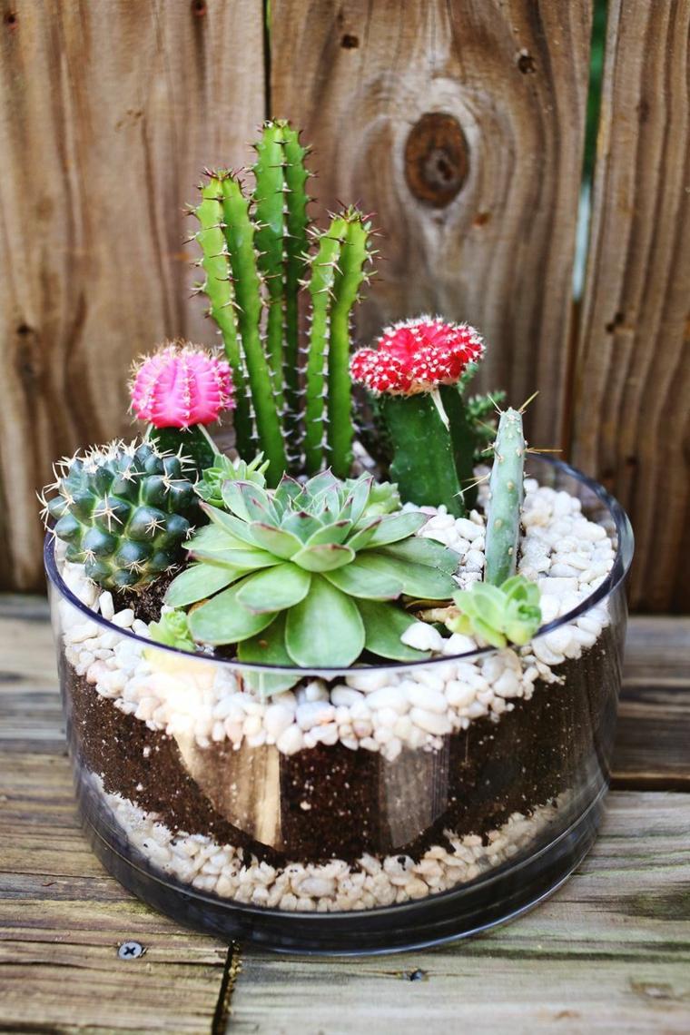 Флорариум открытый с кактусами