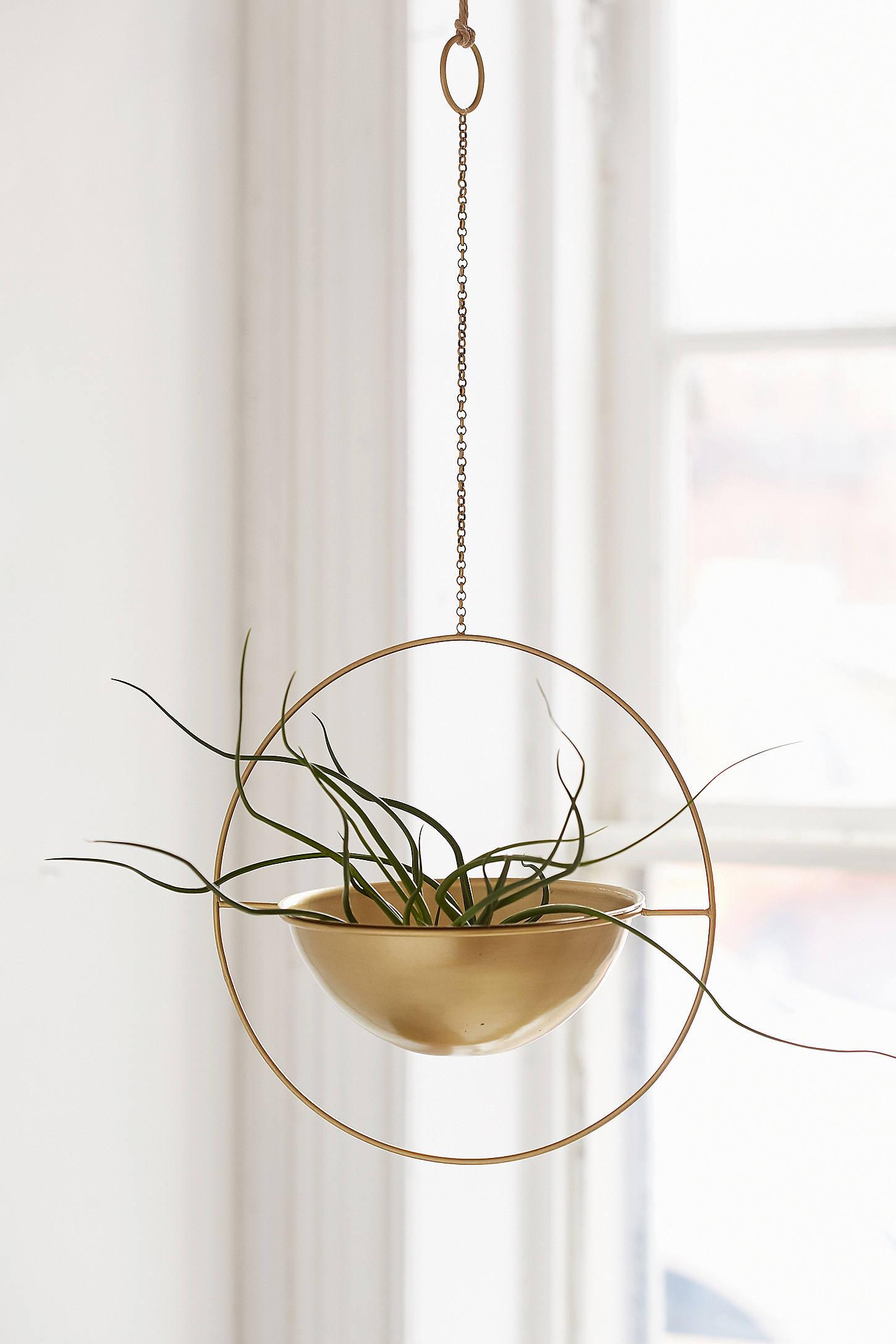 Флорариум в стиле минимализм